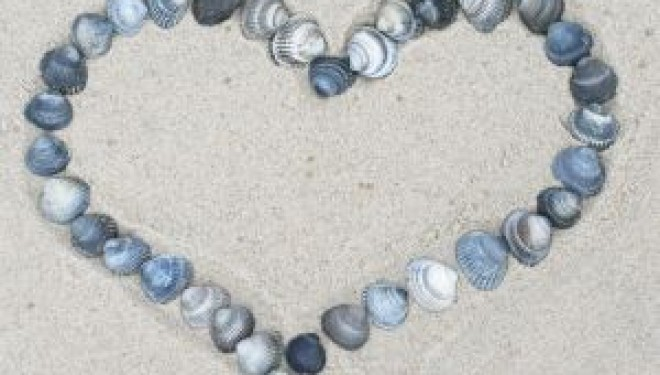 Palpitaciones: El corazón nos habla