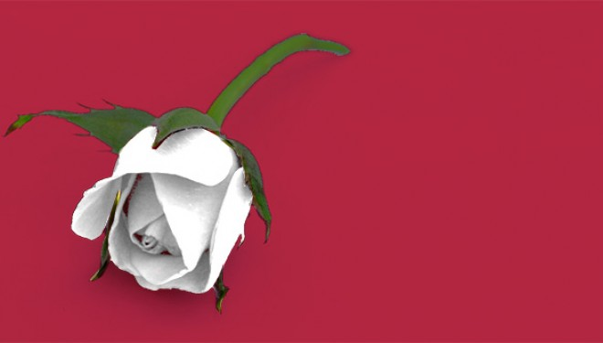 Ausencia de menstruación