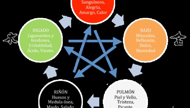 Los 5 elementos en la Medicina China