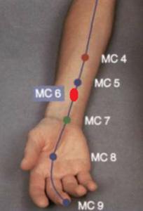 6MC - Fotografía: Atlas gráfico de acupuntura