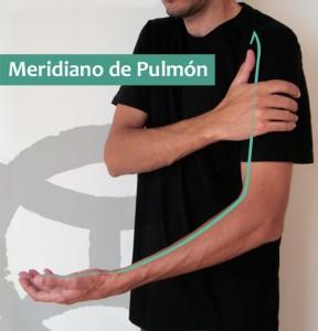 Meridiano de Pulmón