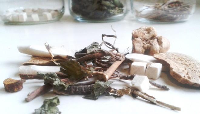 Xiao Yao Wan – Píldora para vagar libremente
