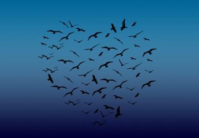 El amor y el despertarse gobernados por el elemento del aire – alimentando el cuarto chakra