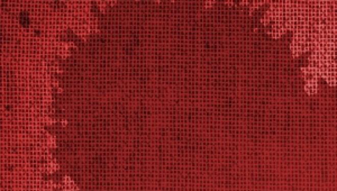 ¿Cómo es la sangre de tu menstruación?