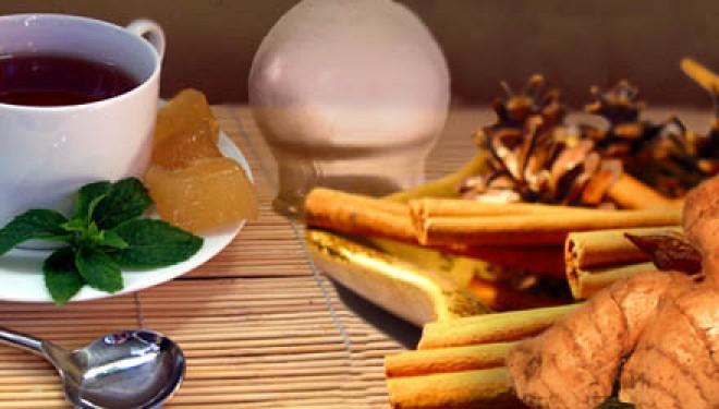 21 de enero: El botiquín casero de la Medicina Tradicional China | Charla gratuita