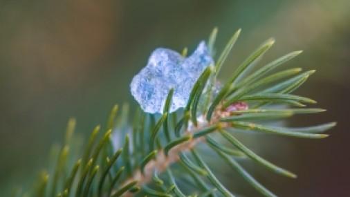 Remedio casero para aliviar la sensación de frío corporal