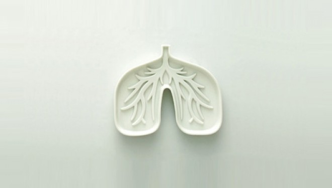 Pulmón, mucho más que la respiración