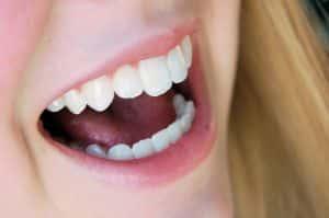 boca - dientes