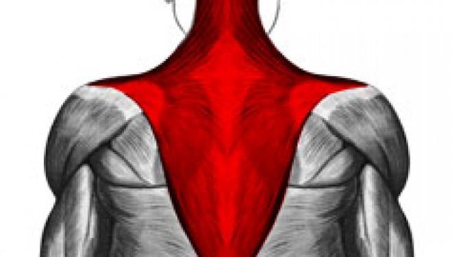 Tensión cervical: trátalo con masaje Tui Na y acupuntura