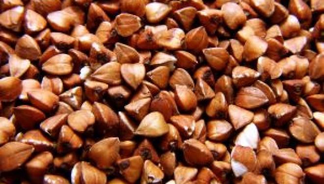 Los cereales integrales, base de nuestra alimentación