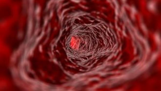 El Mar de la Sangre: Chong Mai